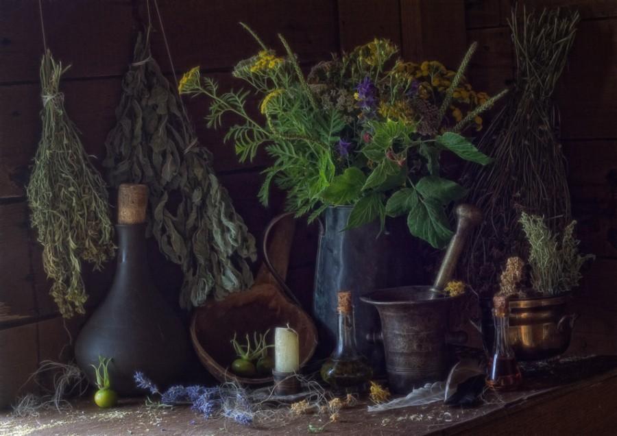 магия значение растений приворот