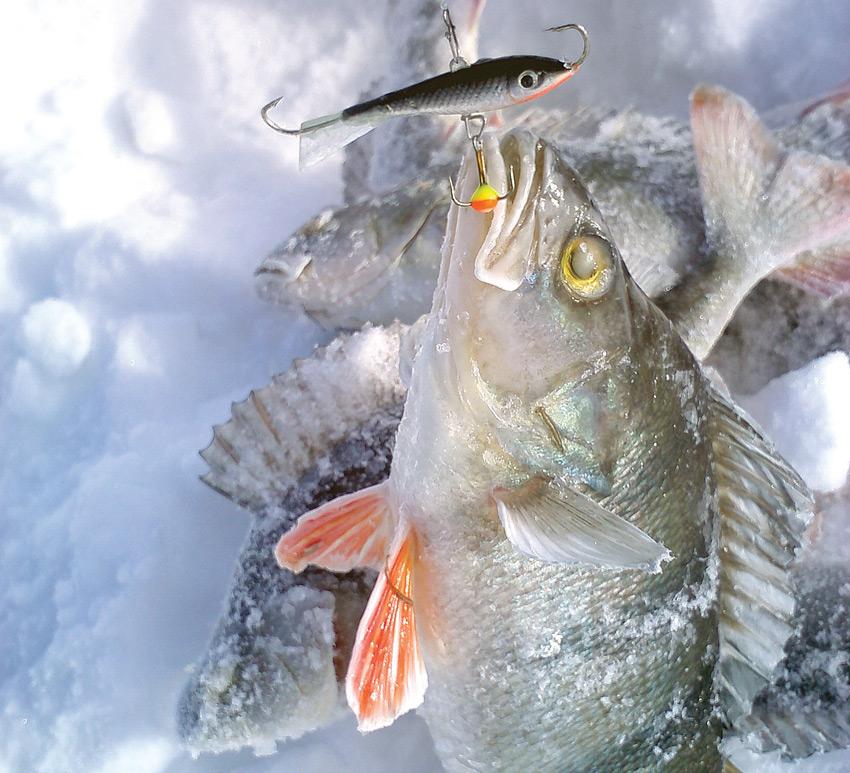 Рыбалка с балансиром зимой