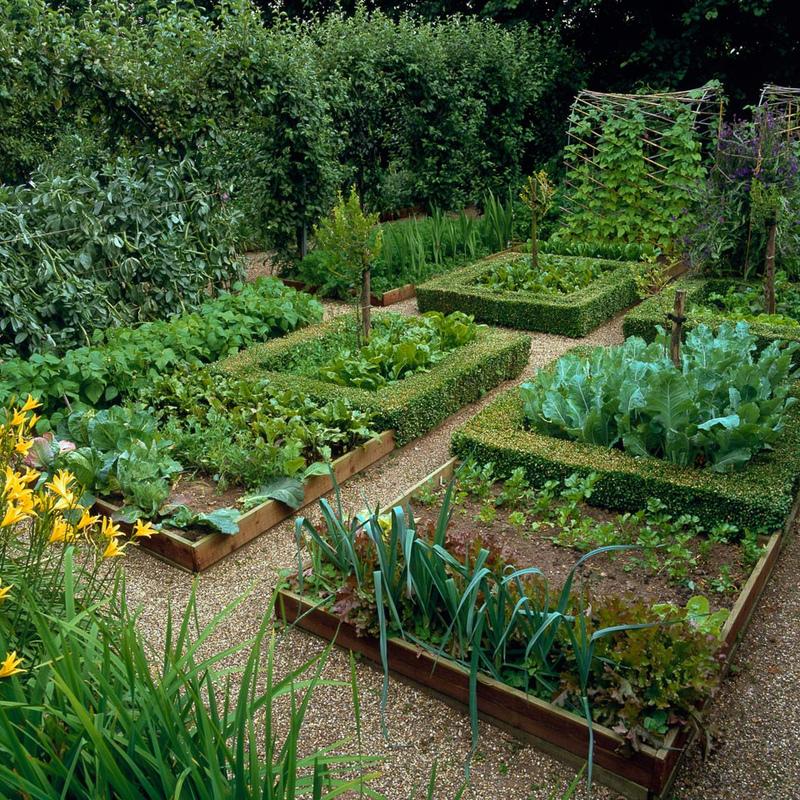 шторы стиле сад огород дача своими руками фото всегда