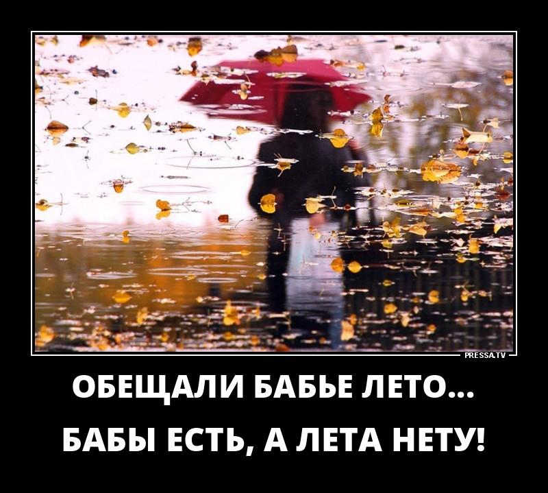 осень дождь демотиваторы например, все