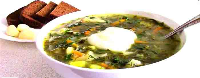 Щавелевый суп – классические рецепты супа из щавеля с яйцом