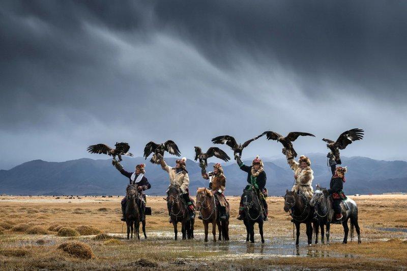 Монгольские охотники с беркутами: потрясающая связь между человеком и птицей Гоби, беркут, монголия, охотники, птицы, пустыня, фотограф, фотографии природы