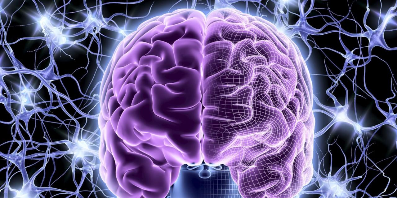 Особенность нашего мозга — верить в чудеса чаще всего ошибочно