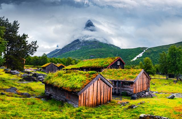 Зачем норвежцам трава на крыше?