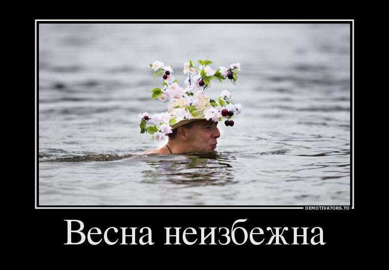 все нормально, приколы про весну смешные картинки судья наносит