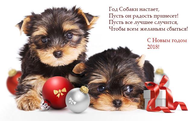 состав сбу поздравление любимой собаке с новым годом каталоге