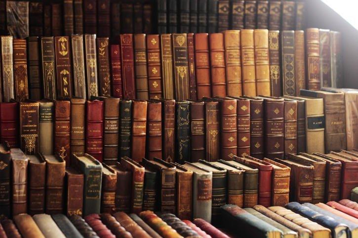 Вы даёте уроки литературы?