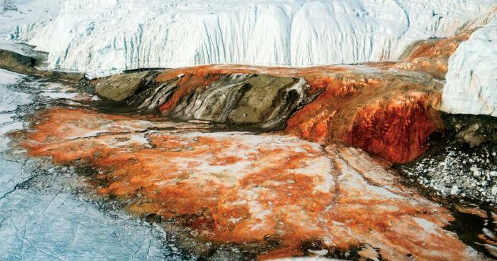 Тайны ледяного континента: 5 фактов об Антарктиде, о которых многие могли не знать