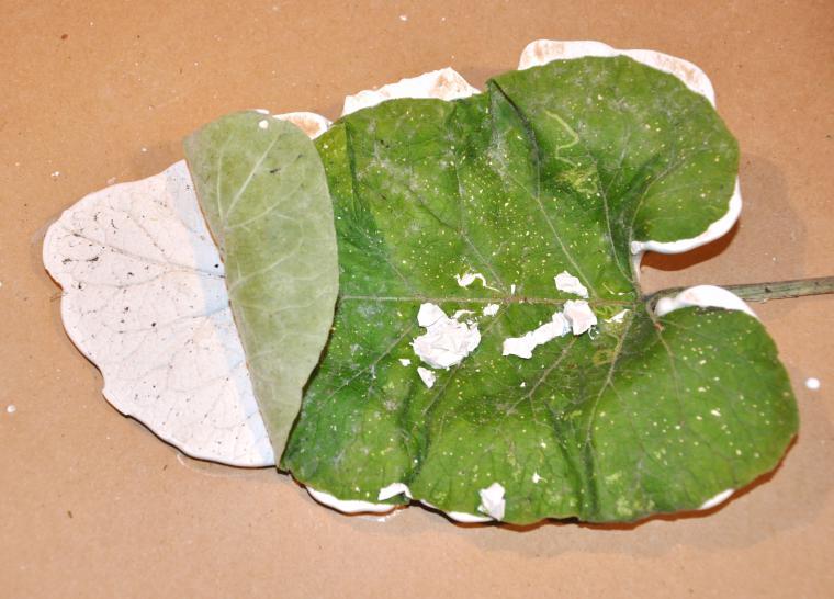 """Блюдо """"листья"""" своими руками креатив"""