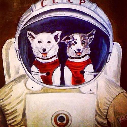Задолго до Гагарина. Собаки-…