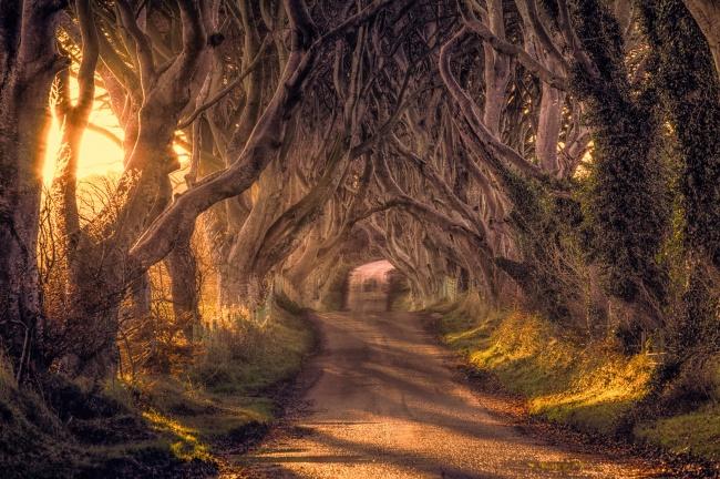 34+ фотографии фантастических мест на земле! Это невероятная красота!