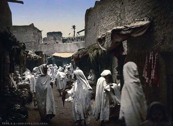 100 фактов об Алжире глазами…