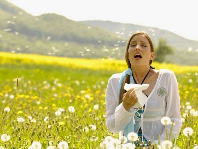 Народные методы лечения алле…