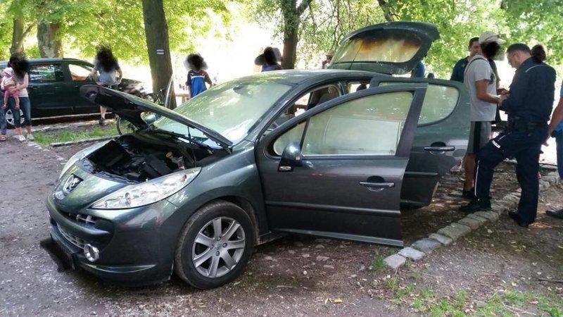 Поляк положил в машину неостывший мангал мангал, машина, неостывший, положил, поляк