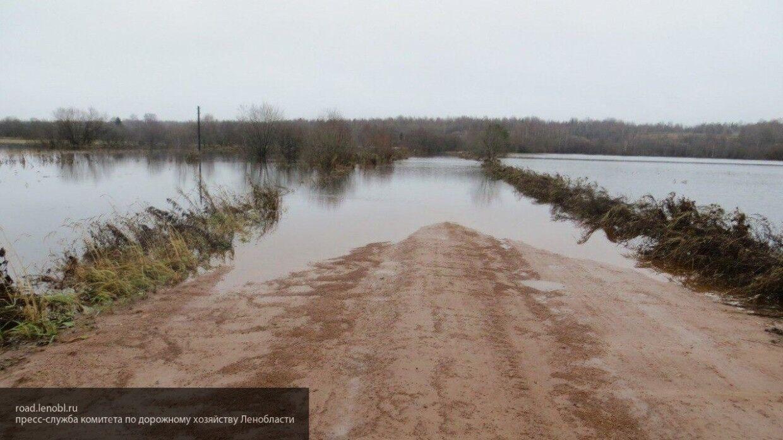 Вышедшая из берегов река в Курганской области затопила автомобильную дорогу