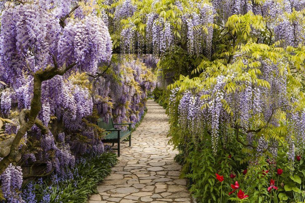 Победители конкурса садово-парковой фотографии