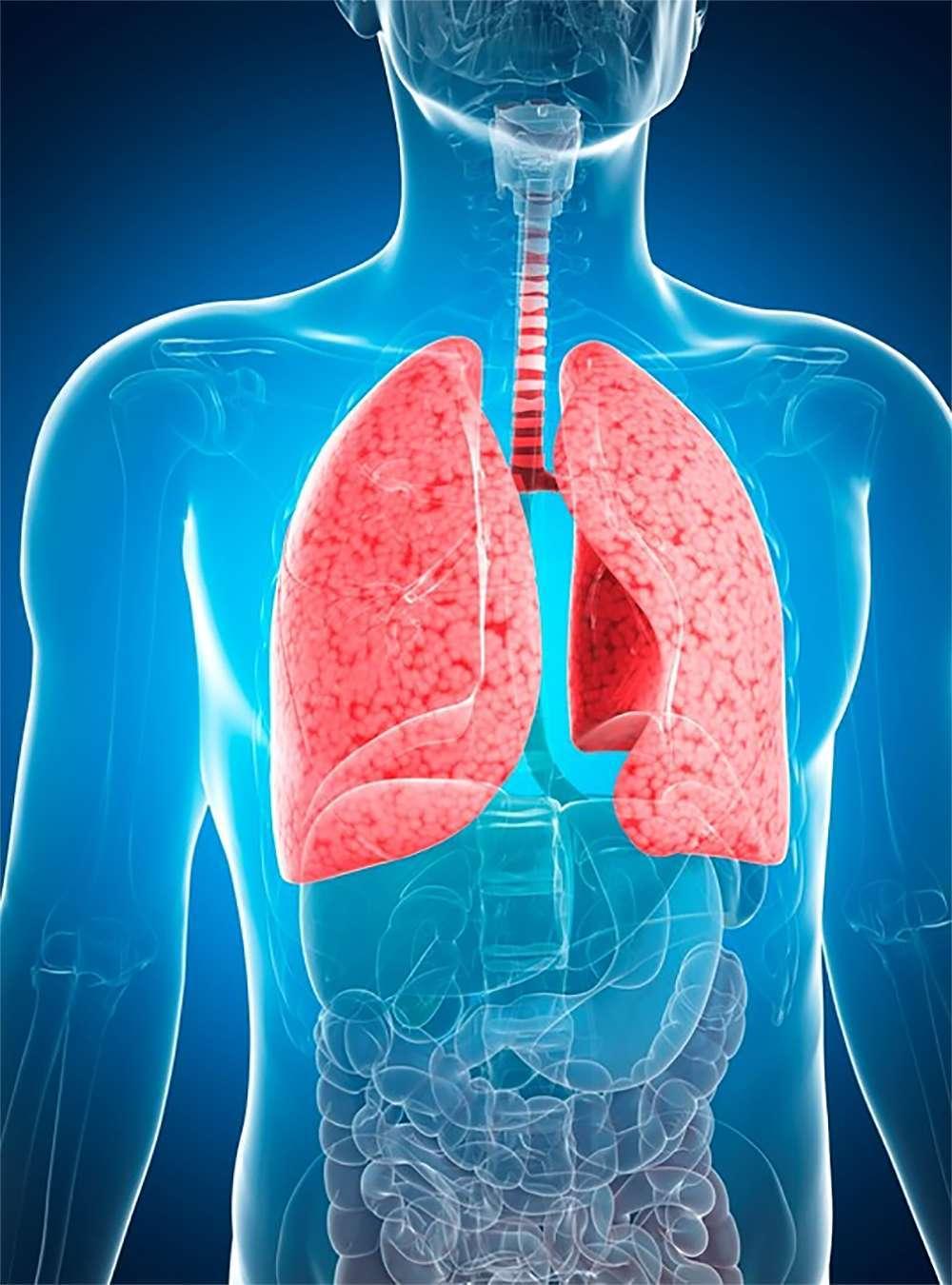 Лечение пневмонии у взрослого