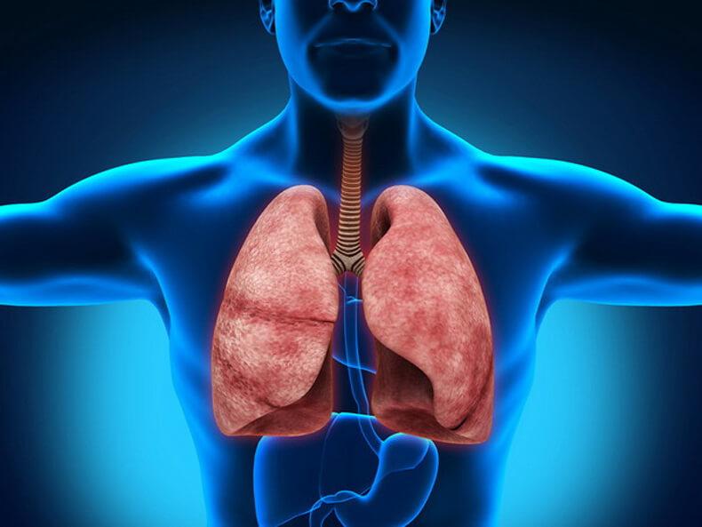 10 важных упражнений по методу Бутейко научат дышать правильно!