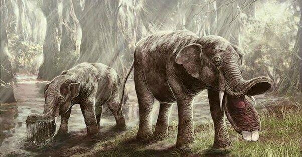 Странные доисторические животные