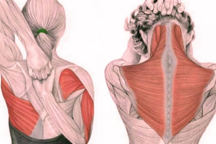 Упражнения для шеи от зажимов и от давления….
