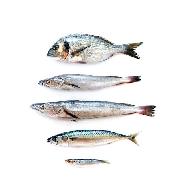 Что выбрать: рыбу или таблетки?