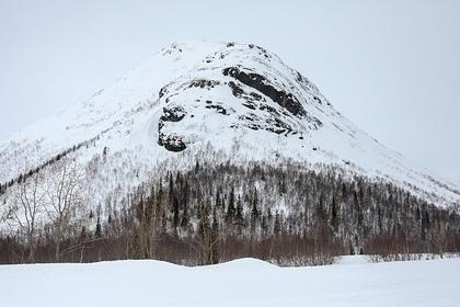 Под Мурманском обнаружили труп без вести пропавшего лыжника Россия