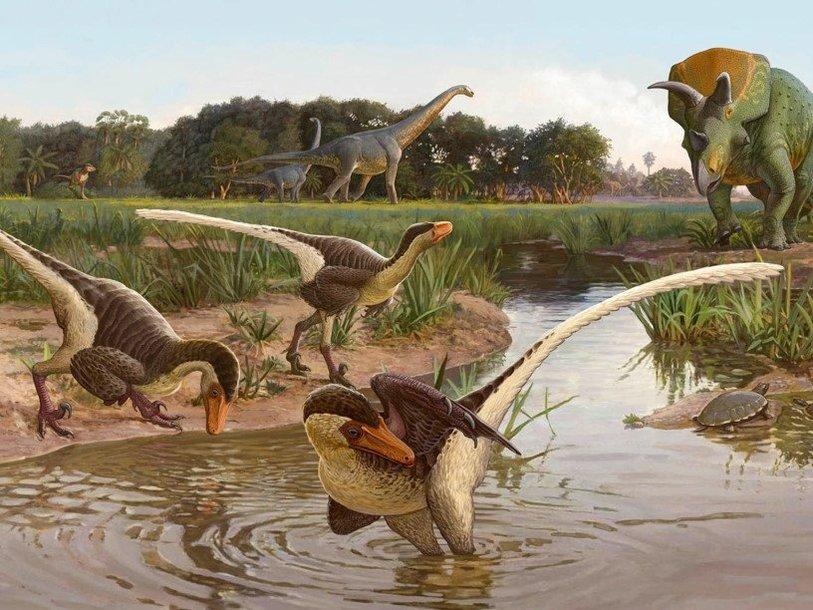 На юго-западе США обнаружен новый вид динозавров