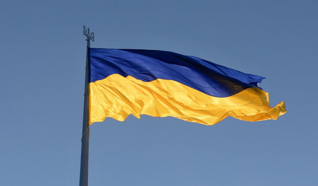 Сергей Веселовский: Россию вывели из себя  украина