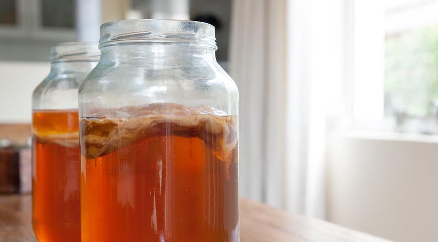 Живучие твари и где они обитают: вся правда о чайном, кефирном и тибетском грибах грибы,здоровье,кефирный гриб,питание,чайный гриб