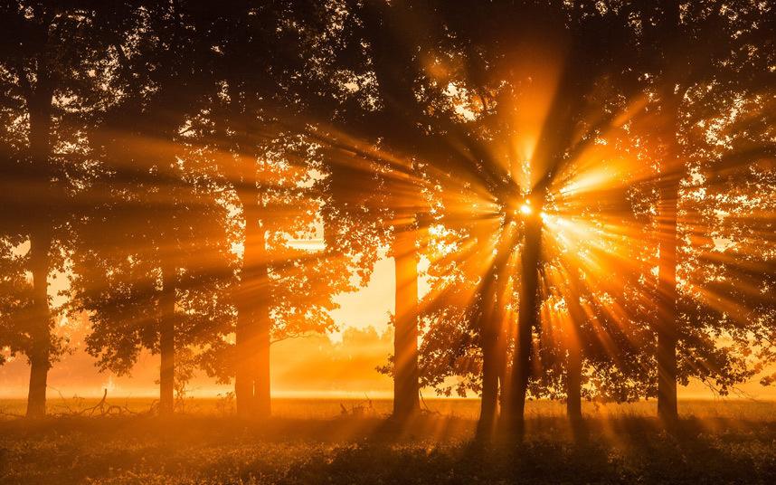 солнце днем картинки того, чтобы