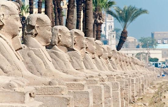 Египет разрабатывает стратег…