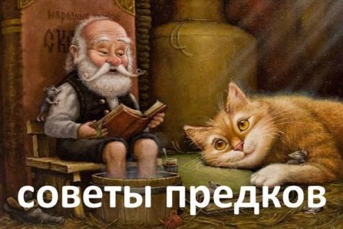 Мудрые советы долгожительств…
