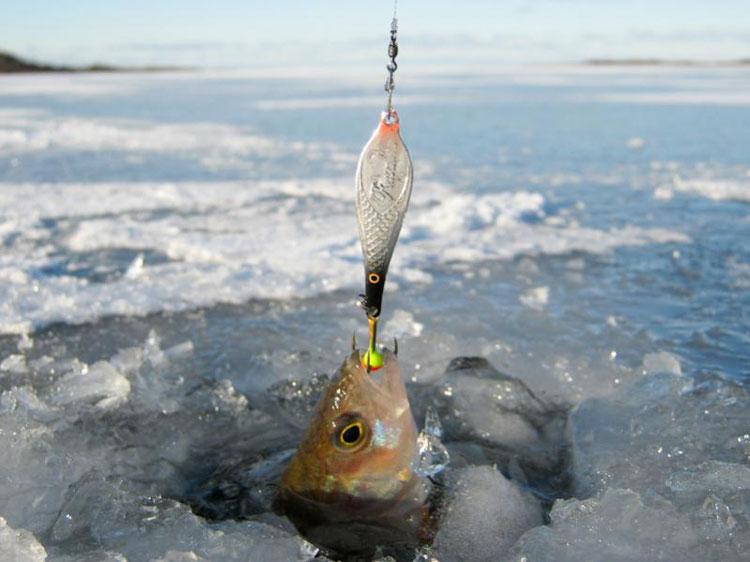 зимой рыбалка со льда снасти фото участки, садовые