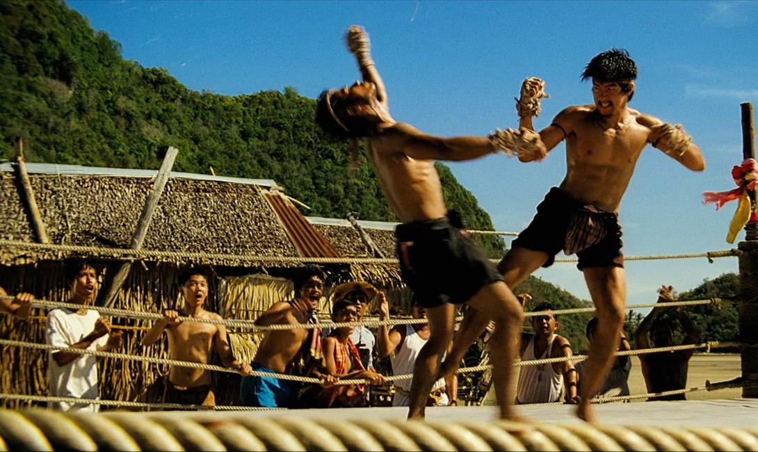 Боевые стили, созданные для быстрой победы над соперником БИ,боевое искусство,бой,кадочников,какое боевое искусство выбрать,карате,крав-мага,Пространство,Спорт,тренировка,ушу