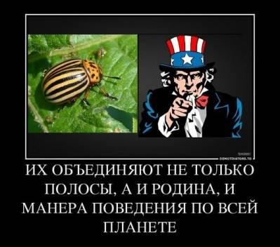 США задохнулись в своей изоленте