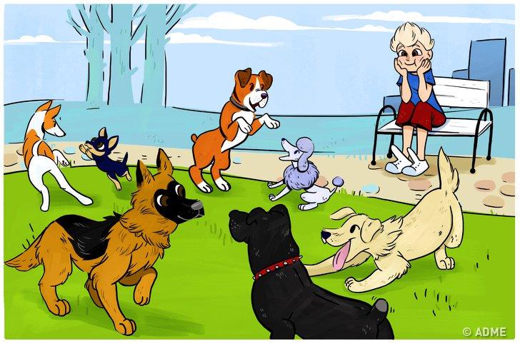 15вещей, которые делают все владельцы собак