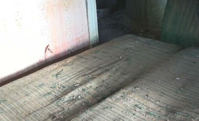 Из старого дивана посыпались монеты: везение кладоискателей в заброшенном доме