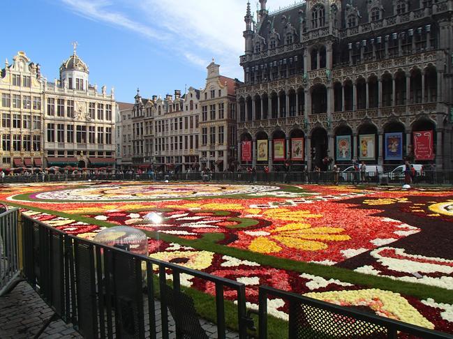 Цветочный ковер Брюсселя 2018