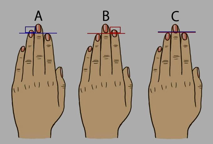 Узнайте характер по длине пальцев