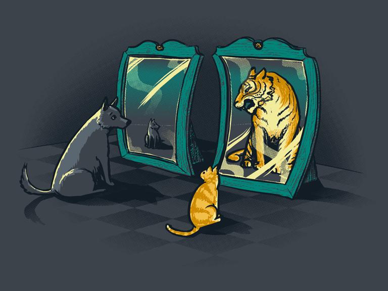 Надписями, смешные картинки про зеркало