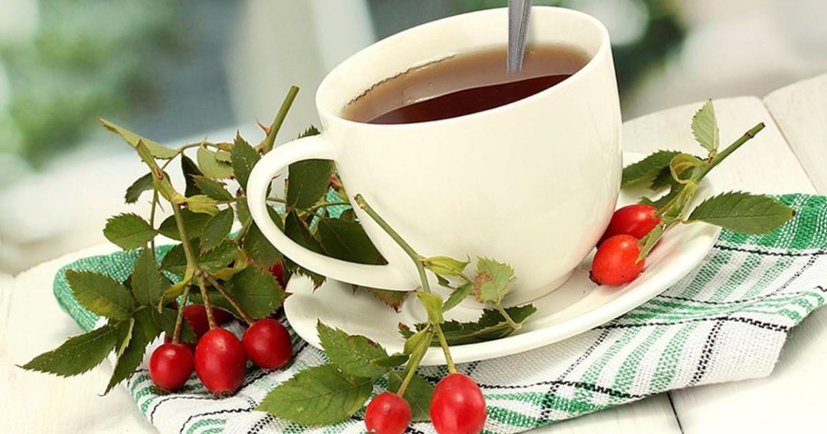 Чай из боярышника: польза и противопоказания