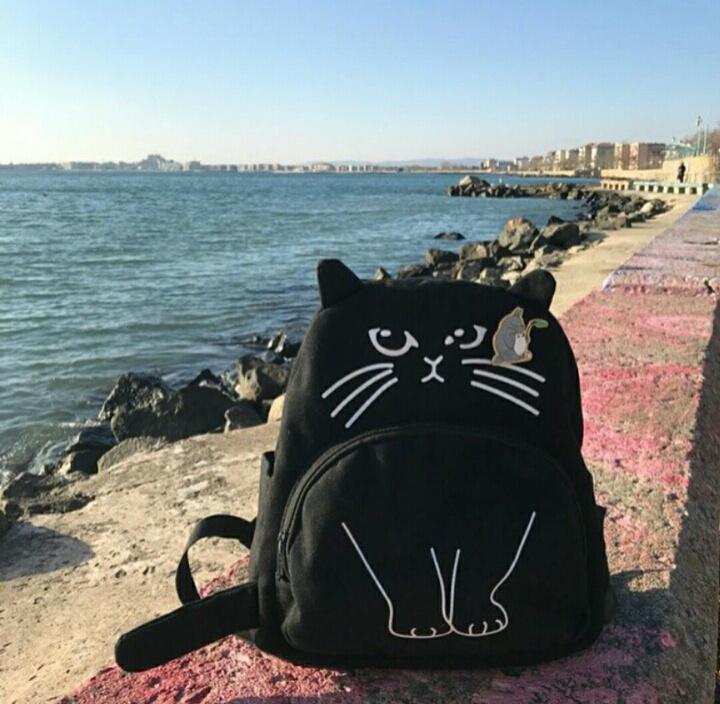 Кот-рюкзак