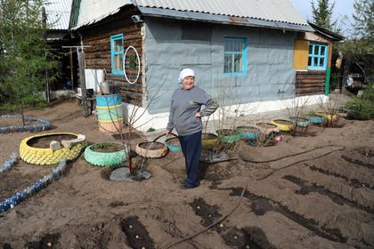 Россельхознадзор рассказал о праве россиян сажать любую картошку