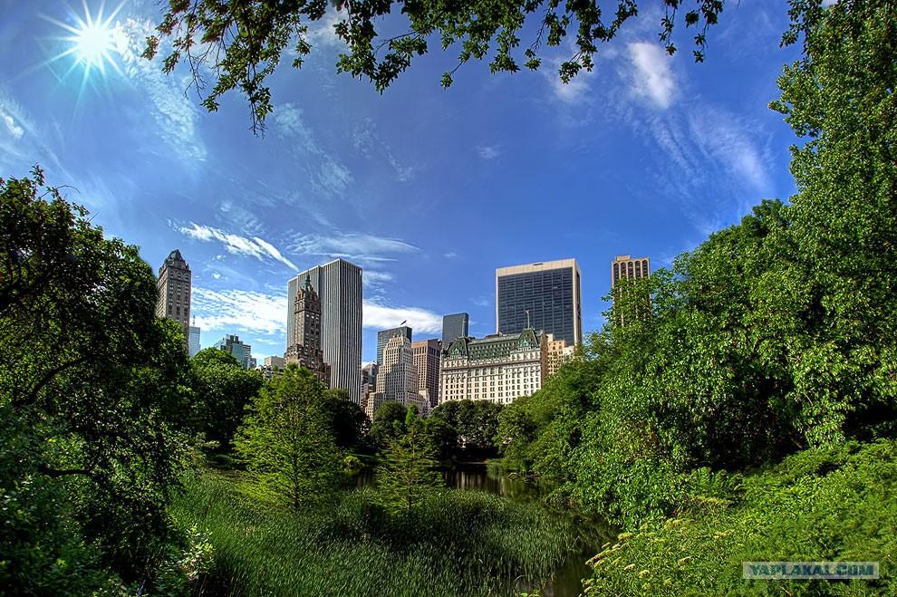Центральный парк Нью-Йорка города,заграница