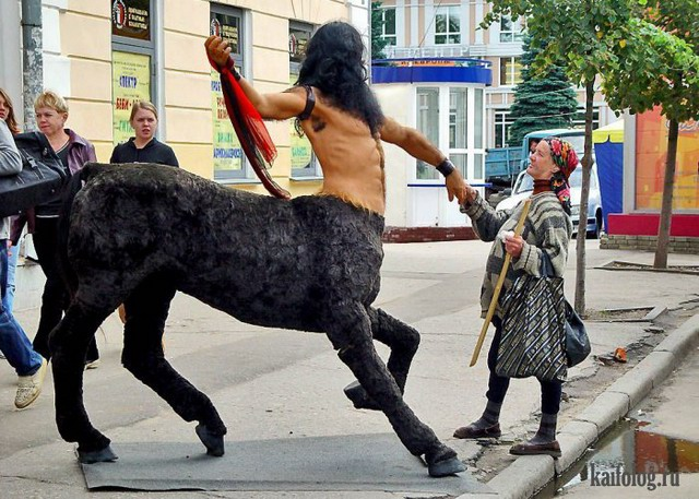 Русские приколы смотреть картинки
