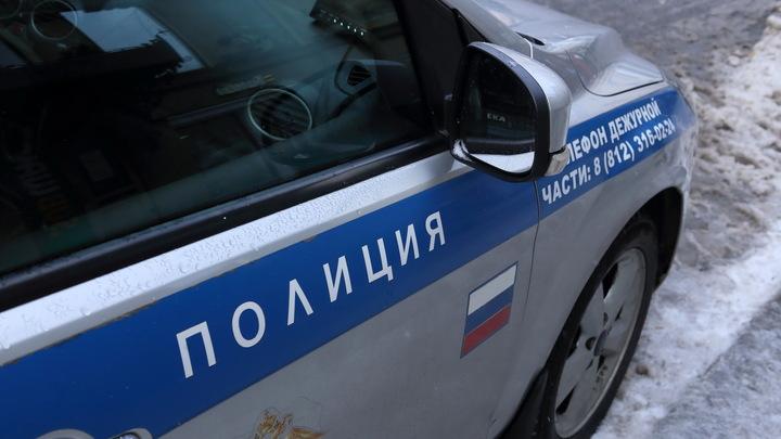 Историк-убийца отправился в СИЗО. Защита ждет скорого ареста: Последние подробности страшного убийства в Петербурге россия