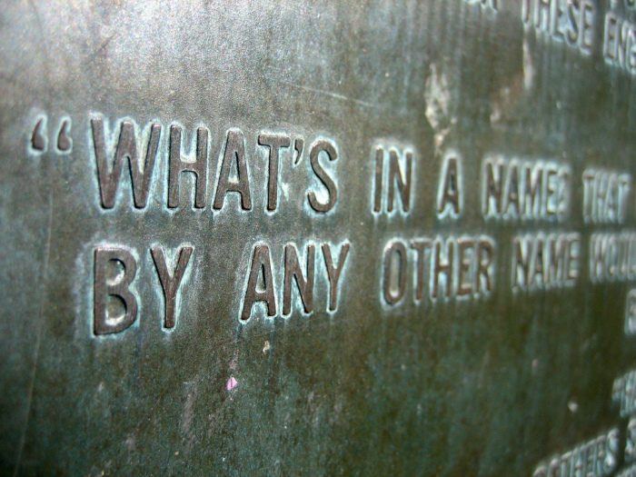 Имя — вещь не постоянная, но доходная. /Фото: sasharising.files.wordpress.com