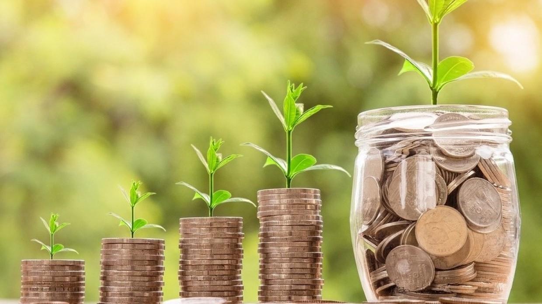 Профессор Финогенова назвала размер сбережений для будущей достойной пенсии Общество