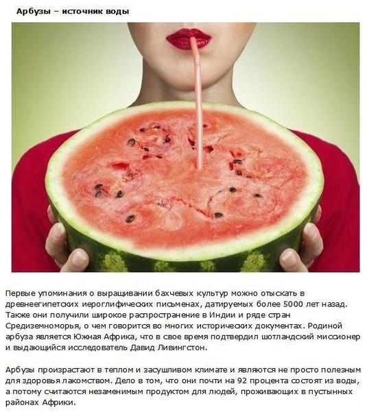 10 фактов о фруктах, которые должен знать каждый