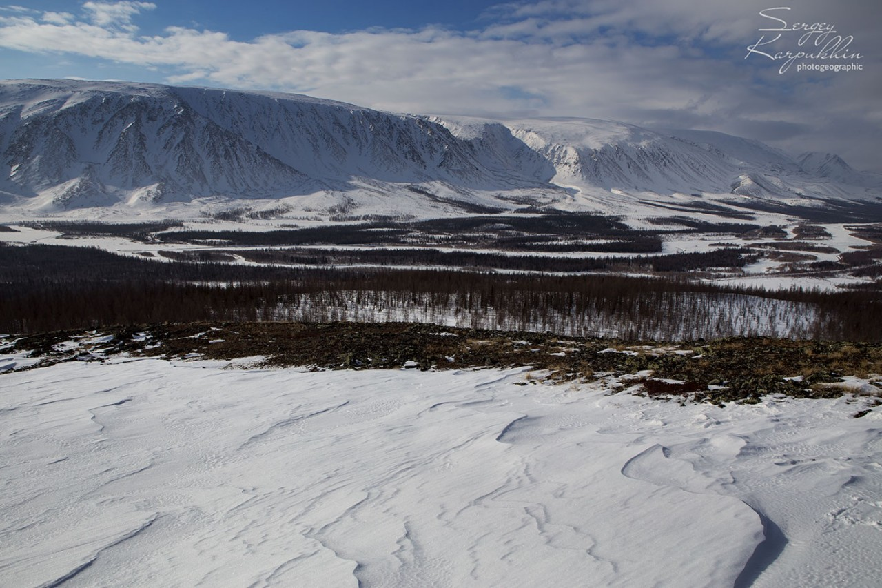 Как мы каслали на Полярном Урале или жизнь ненецких оленеводов.
